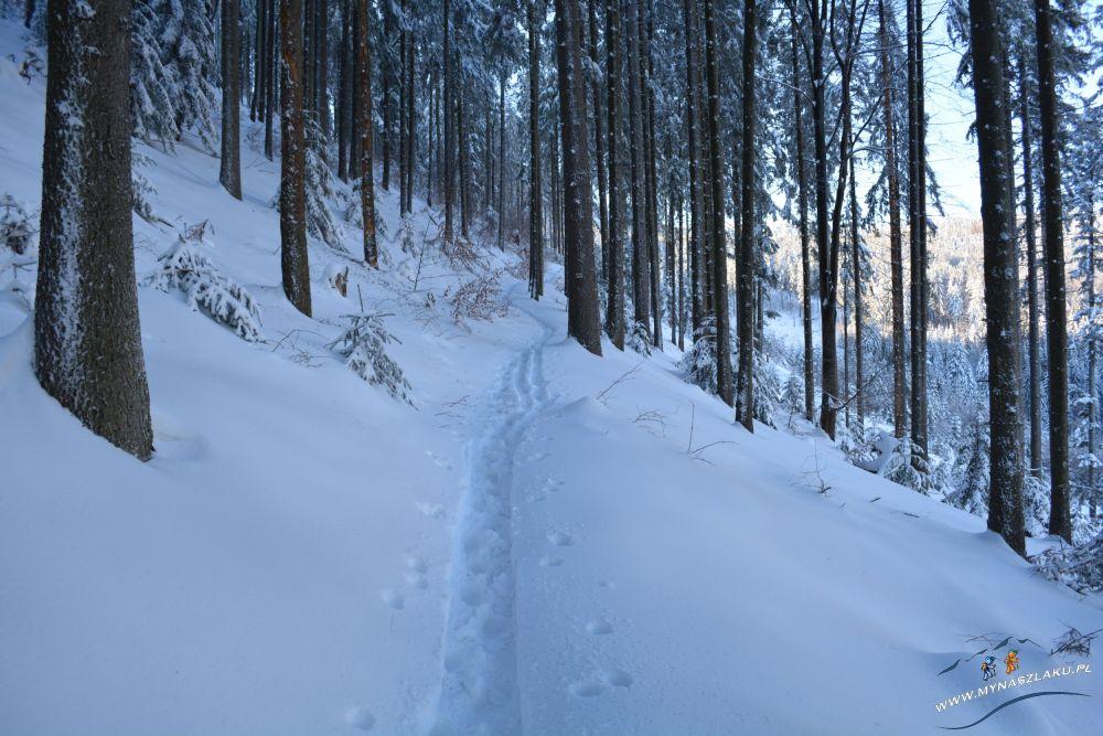 Najłatwiejszy szlak na Pilsko