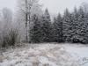 Maślana Góra - Beskid Niski 28.12.2014