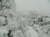 Babia Góra 26.11.2013