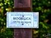Mogielica 30.08.2015