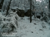 Bukowiec i rezerwat
