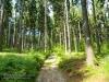 Góry Wałbrzyskie - Chełmiec 13.06.2014