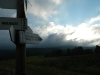 Tarnica 31.07.2013