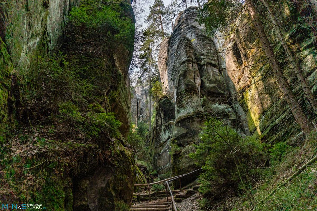 Widoki w Adrspach w Czechach