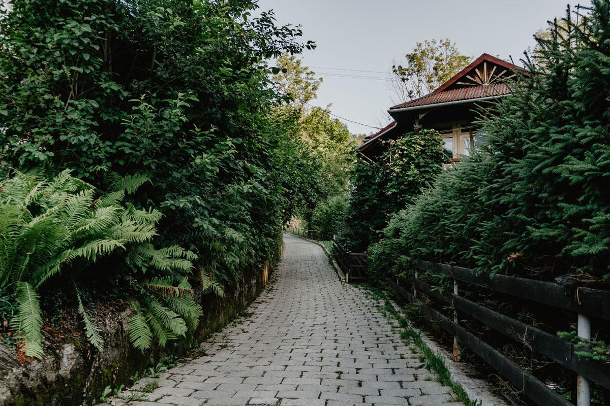 ze Szczawnicy do Bacówki pod Bereśnikiem