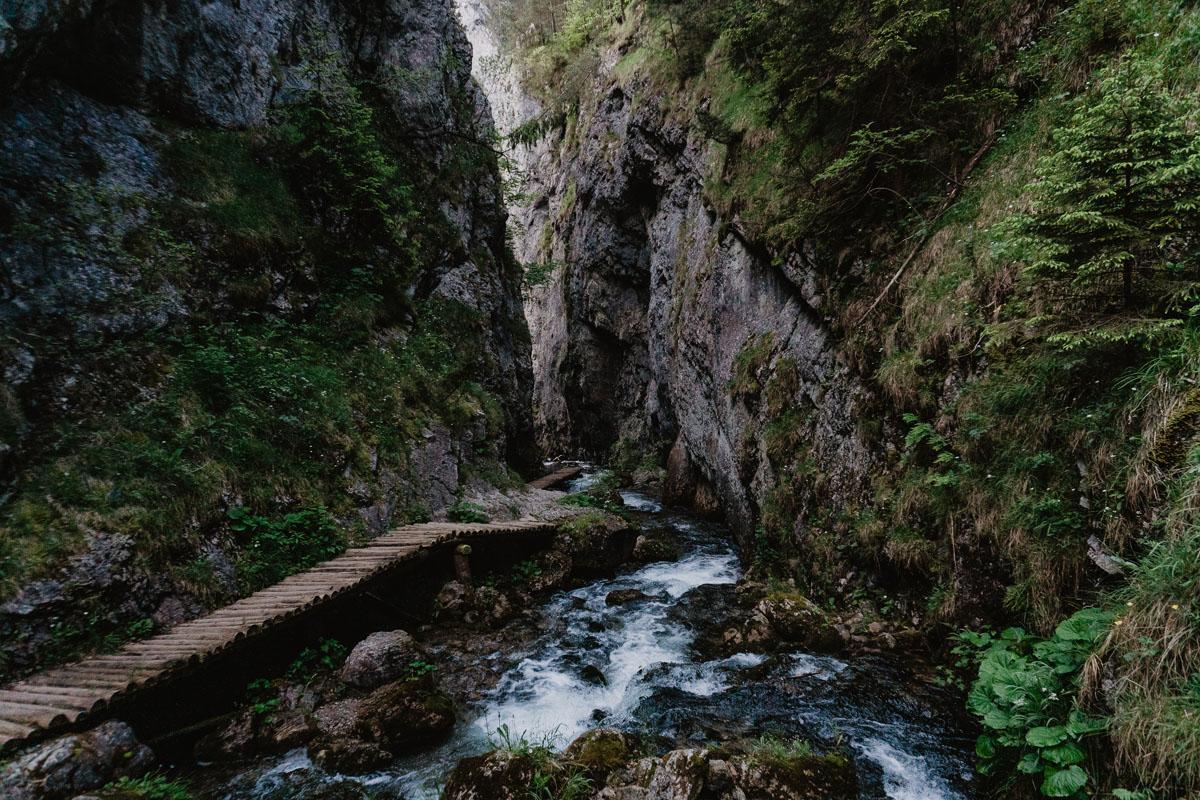 Dolina Prosiecka - opis szlaku