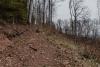 dzikowiec-wieza-widokowa-04-19-0005