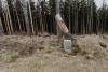 dzikowiec-wieza-widokowa-04-19-0011