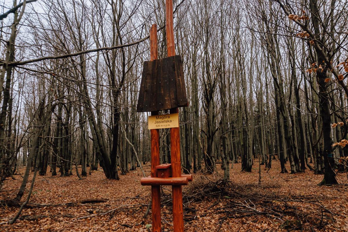 Magóra Jasielska - nowy szczyt w Beskidzie Niskim