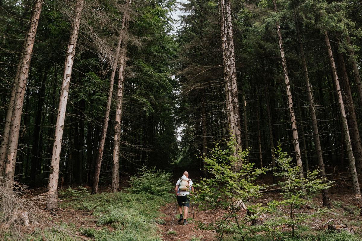 Opis szlaku na szczyt Girova w Czechach