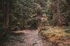 grota-komonieckiego-szlak-czarny