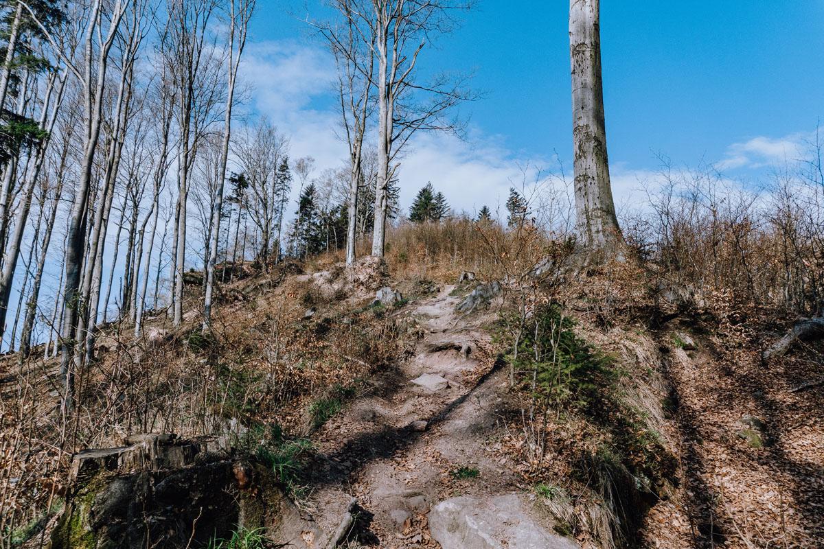 Szlak na Jański Wierch