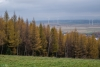 Kalwaria Rymanowska, Beskid Niski, Rymanów