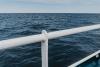 kolobrzeg-rejs-statkiem0018