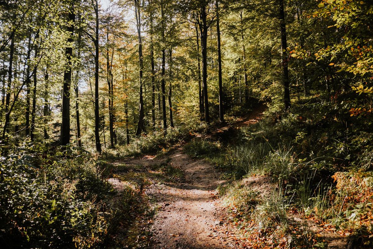 Korbania z Bukowca - opis szlaku