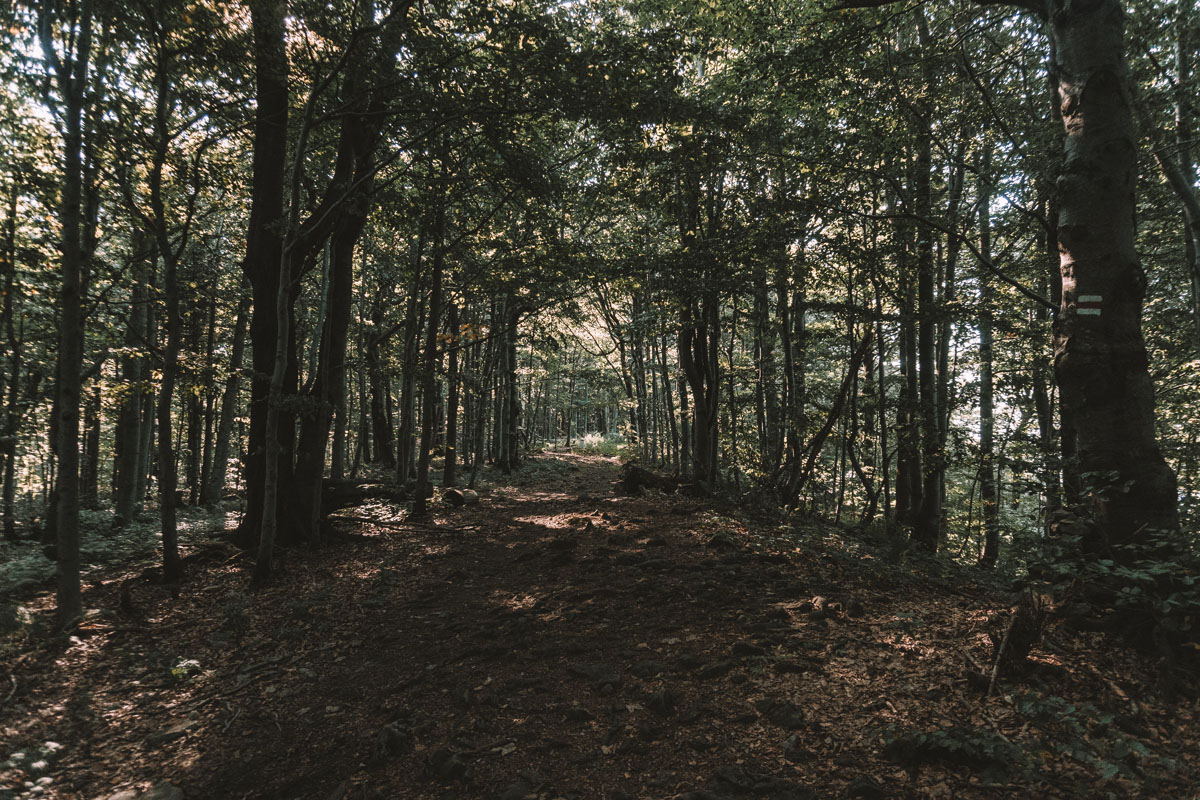 Lackowa w Beskidzie Niskim