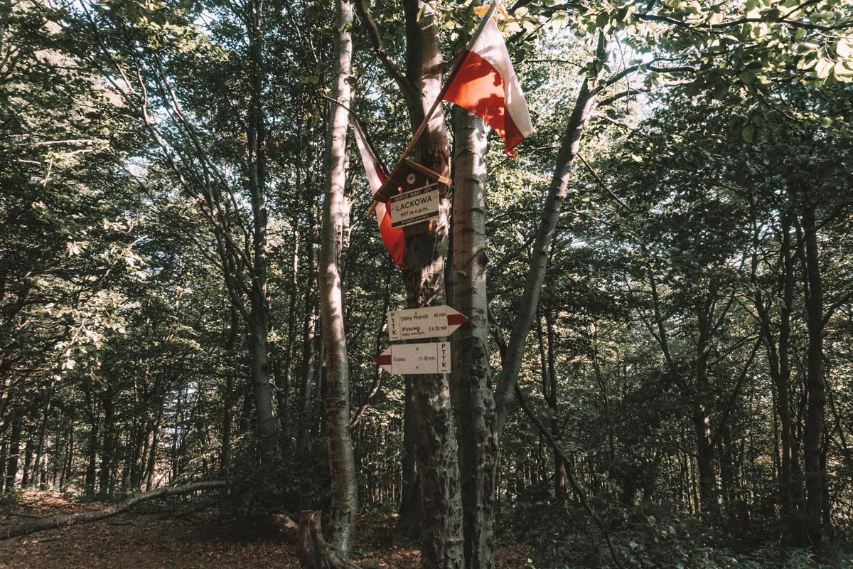 Lackowa - szczyt - Korona Gór Polski