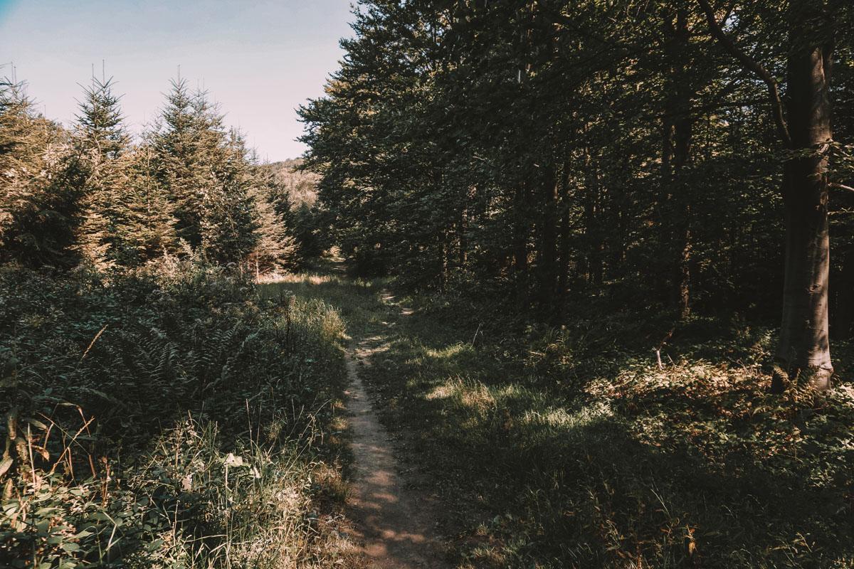 Lackowa - Beskid Niski