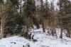 Lubań - Gorce. Szlak z Przełęczy Snozka