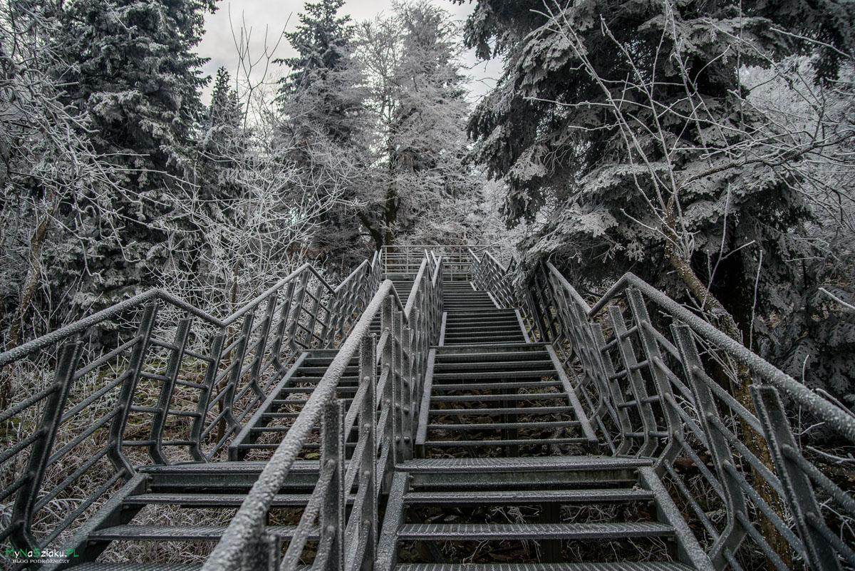 Schody na Łysej Górze