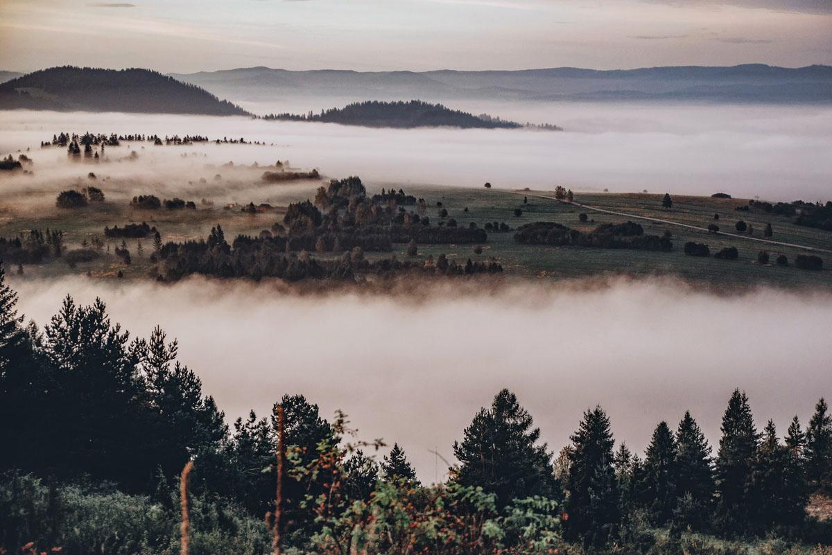 Widok z Góry Wdżar na Pieniny o poranku