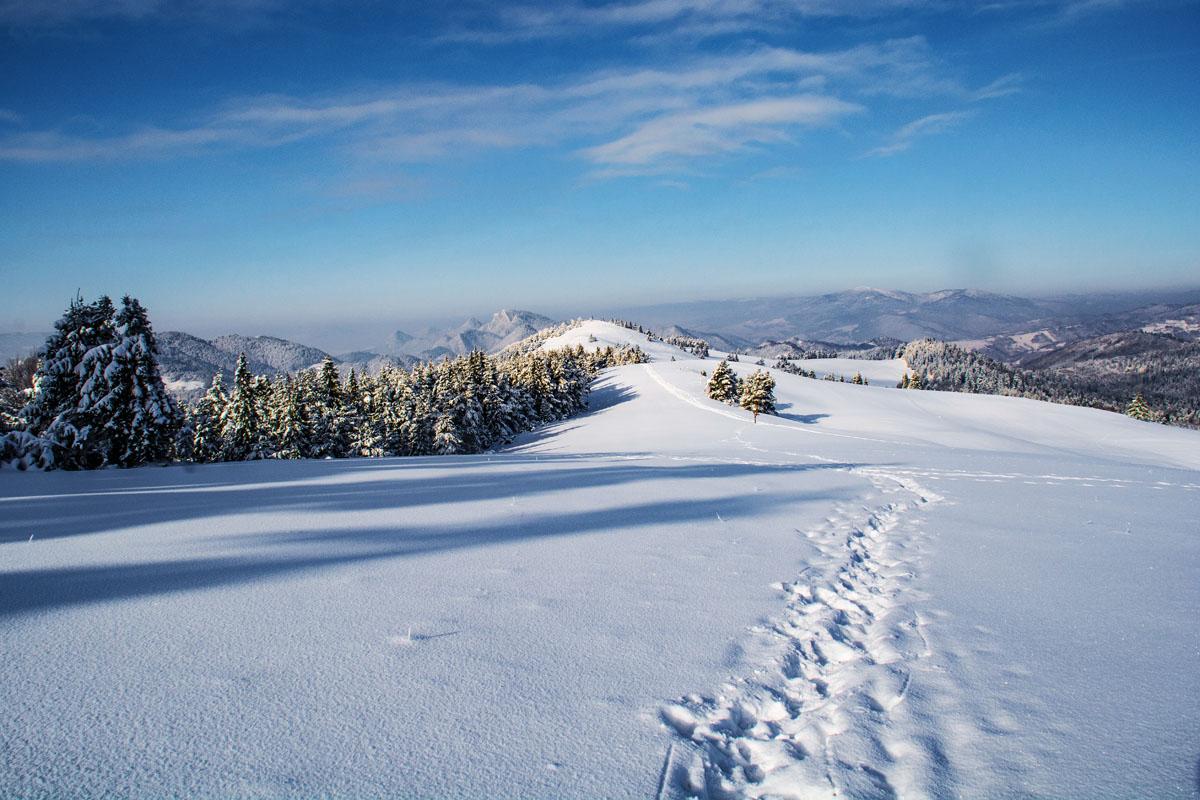 Szlak z Durbaszki na Wysoki Wierch