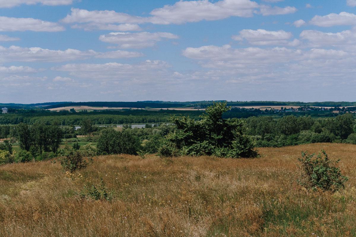 Rezerwat Krzyżanowice
