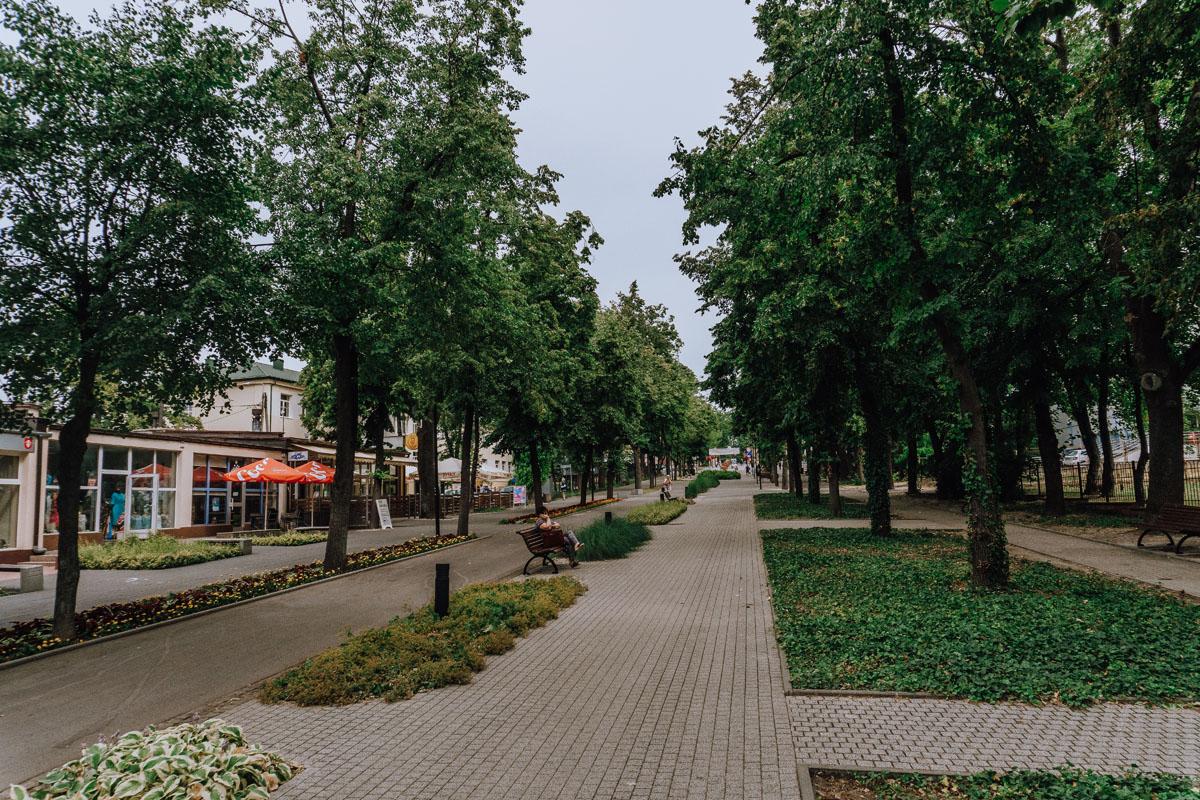 Aleja Adama Mickiewicza