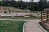 PuszczaBialowieska08180064