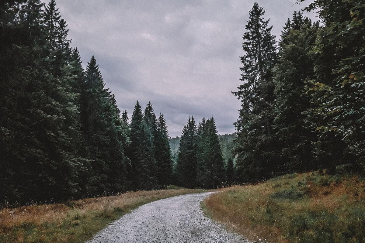 Szlak z Bielic na Rudawiec