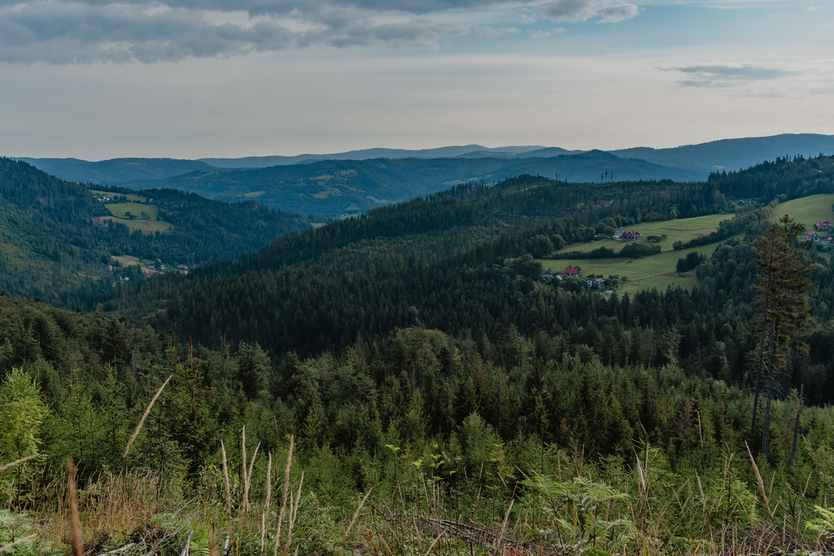 Szlaki w Beskidzie Śląskim