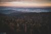 Szpilówka, Pogórze Wiśnickie