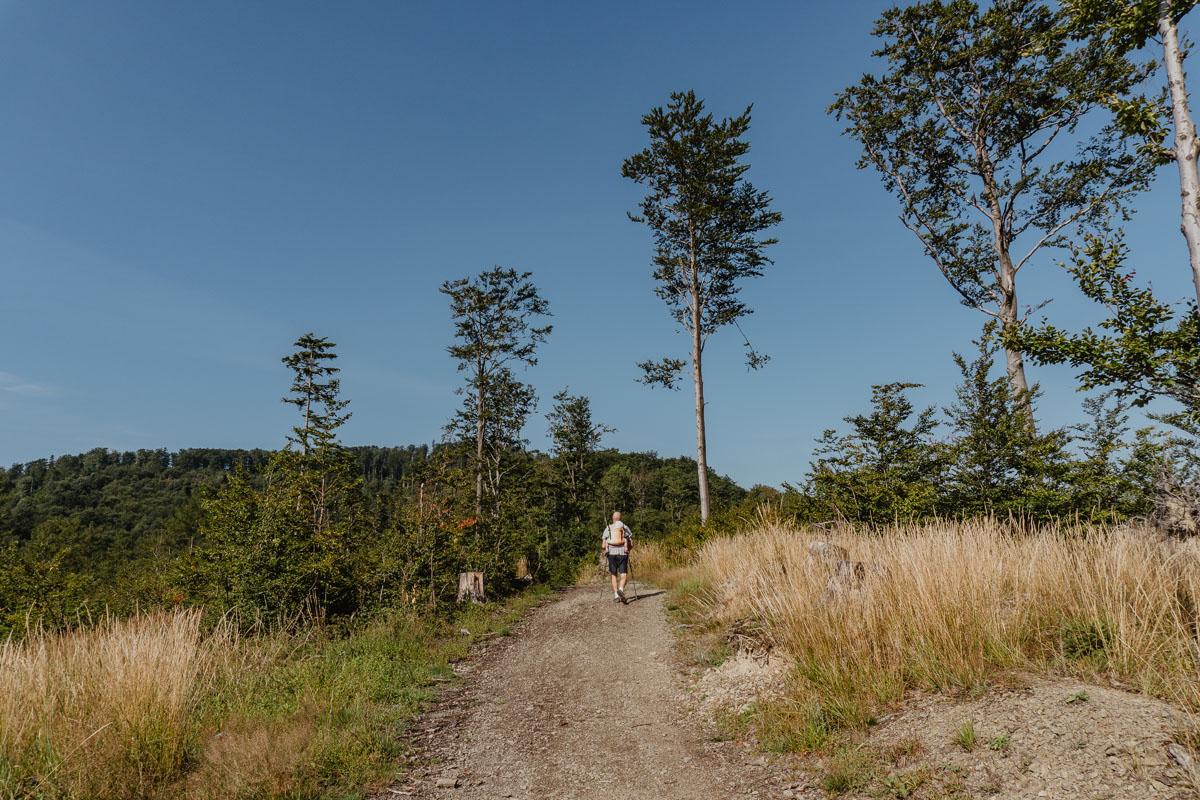 Droga na Przełęcz Kołowrót