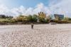 Morze-Baltyckie-plaza-miedzyzdroje-05-19-0003