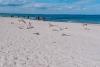 Morze-Baltyckie-plaza-miedzyzdroje-05-19-0016