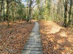 Najpiękniejszy szlak w Bieszczadach