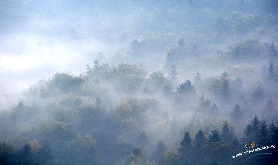 Białowodzka Góra skąpana we mgle
