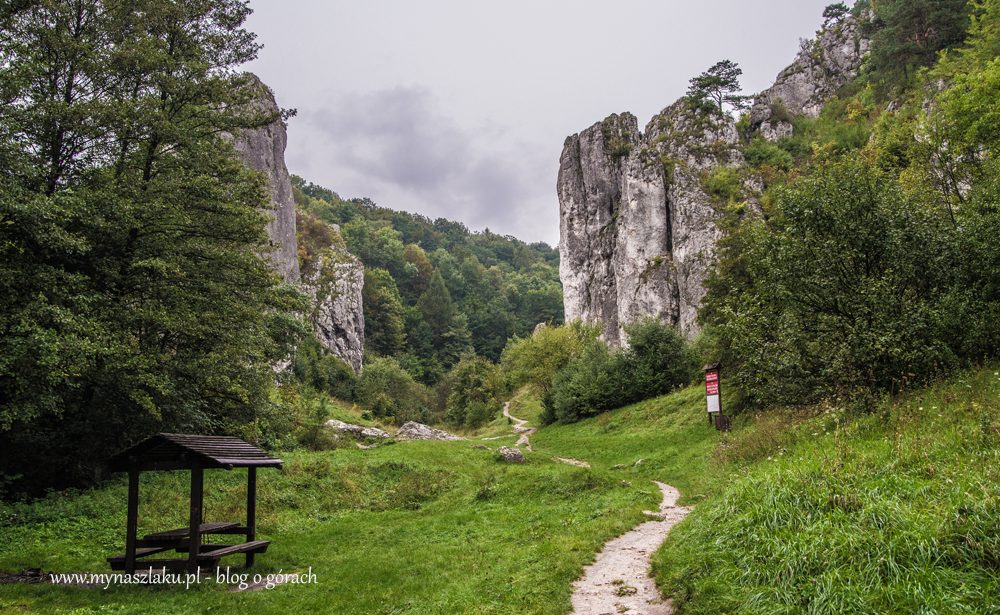 Jura Krakowsko-Częstochowska: Dolina Bolechowicka i Dolina Kobylańska