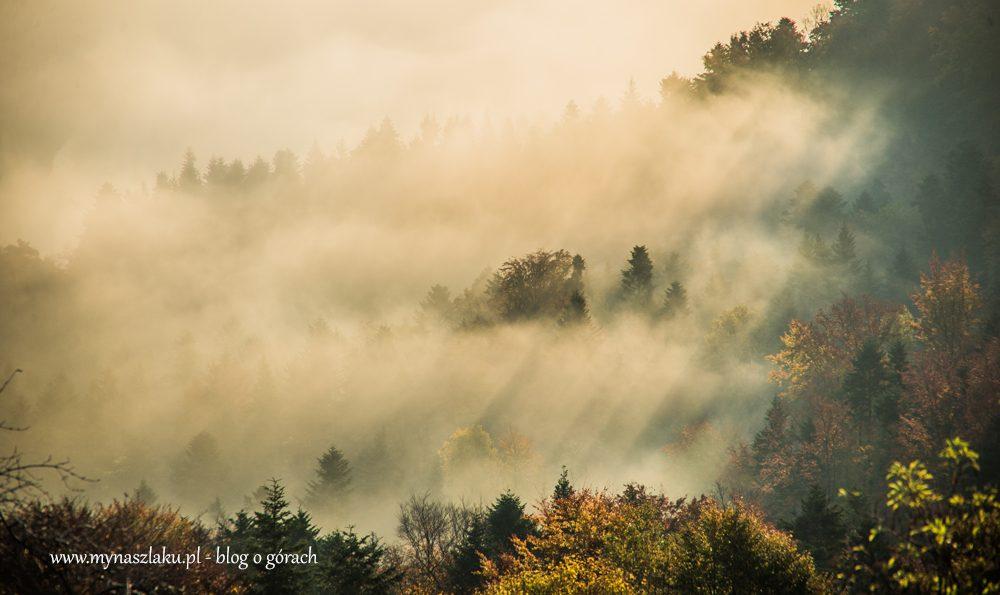 Beskid Wyspowy: Październikowa Białowodzka Góra