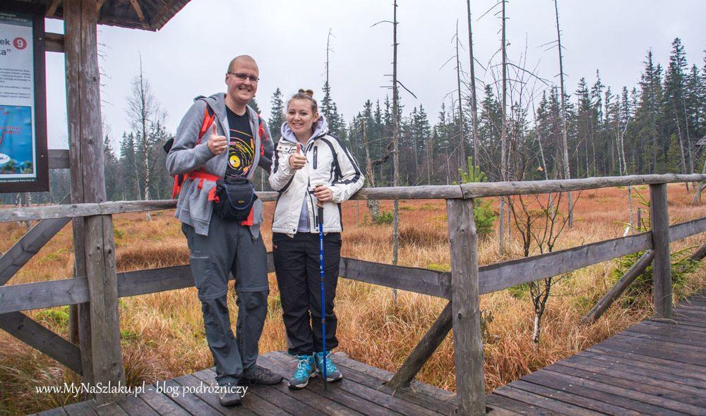 Góry Bystrzyckie: Rezerwat Przyrody Torfowisko pod Zieleńcem