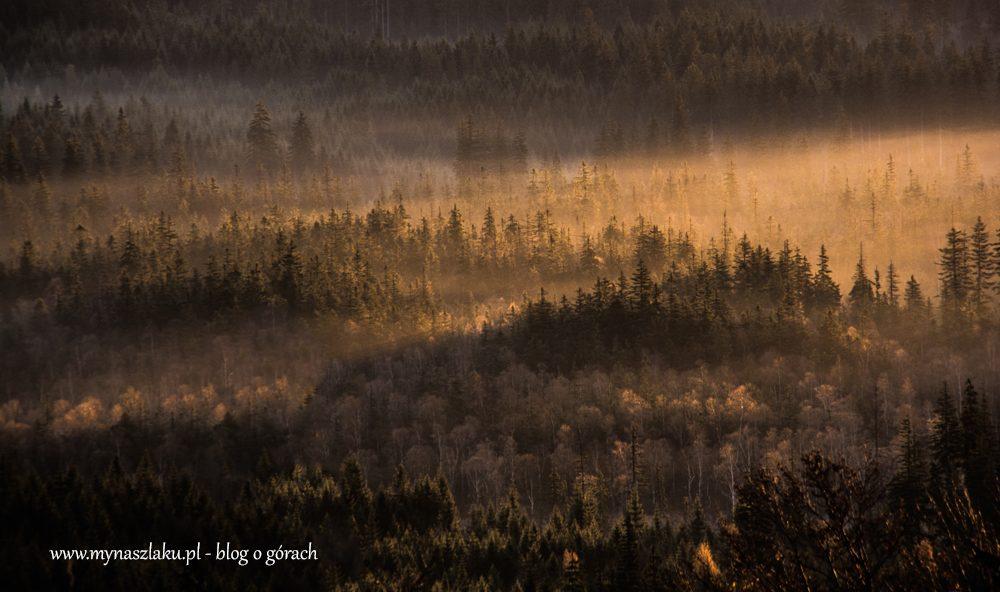 Góry Orlickie: Wschód słońca w Zieleńcu