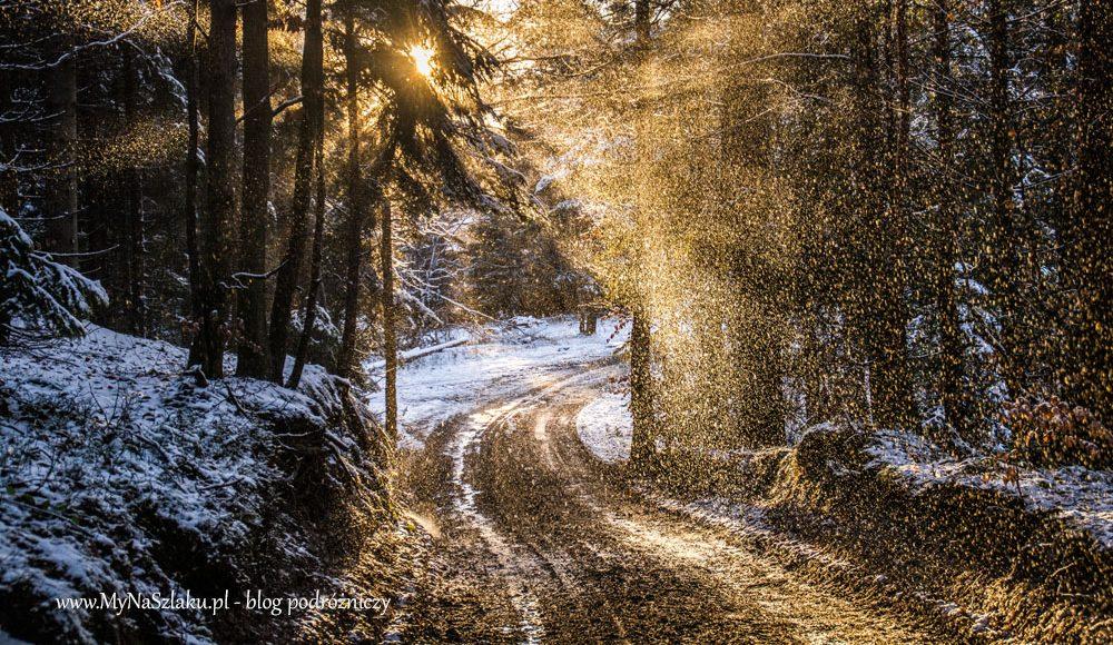 Beskid Wyspowy: Przełęcz Rydza-Śmigłego – Łopień