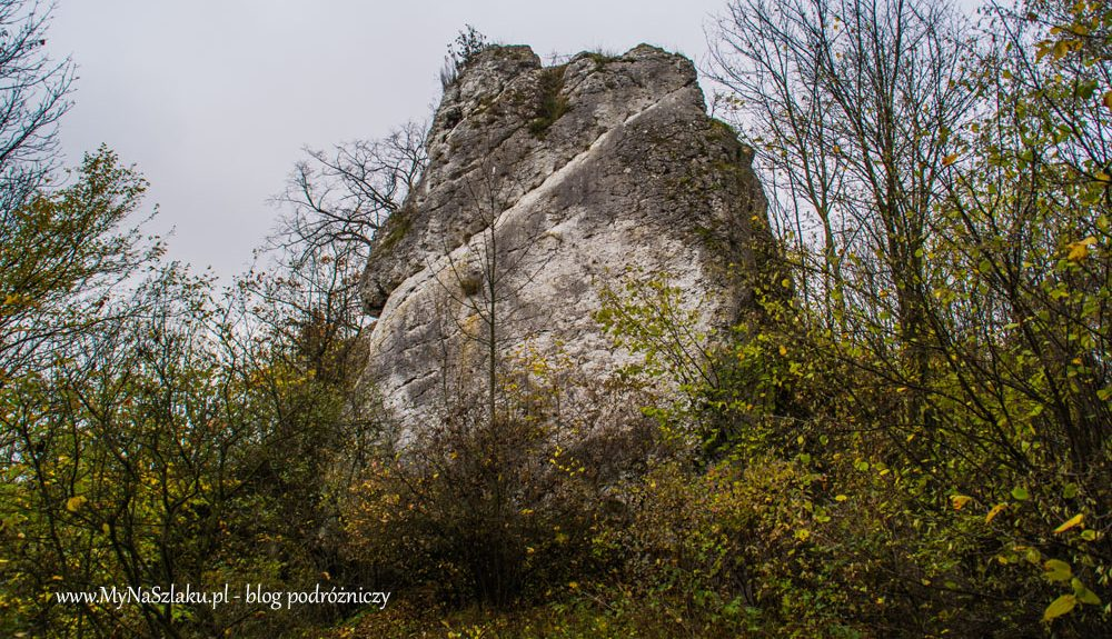 Jura Krakowsko-Częstochowska: Zamek Ostrężnik i Strażnica w Suliszowicach
