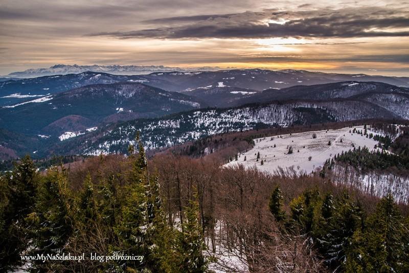 Korona Gór Polski: Styczniowa Mogielica – najwyższy szczyt Beskidu Wyspowego