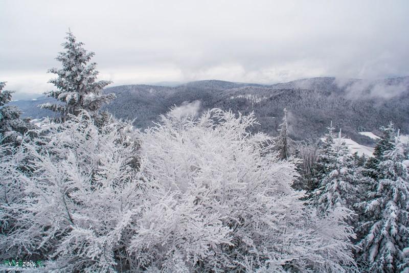 Beskid Niski: Jaworze, wieża widokowa i zima w pełni