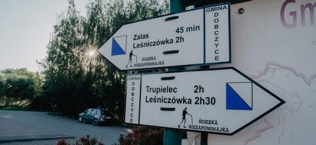 Ścieżka Niezapominajka w Kornatce. Syberia, Ostrysz, Glichowiec i kleszcze