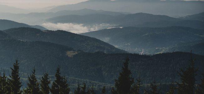 Mogielica z Przełęczy Rydza-Śmigłego zielonym szlakiem