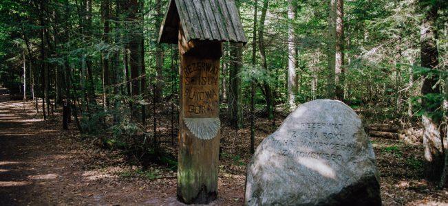 Roztoczański Park Narodowy: Piaseczna Góra, Bukowa Góra i Muzeum w Zwierzyńcu