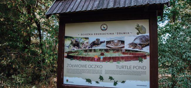 """Poleski Park Narodowy: Ścieżka przyrodniczo-dydaktyczna """"Żółwik"""""""