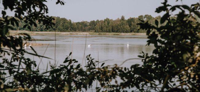 """Poleski Park Narodowy: Ścieżka przyrodnicza """"Perehod"""""""